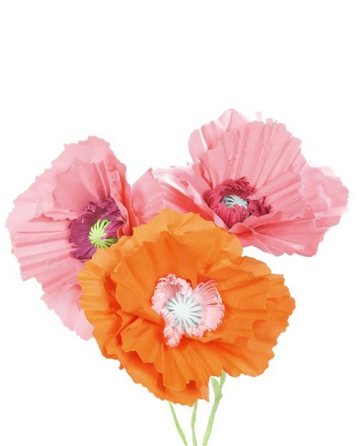 giant paper poppy flower decoration
