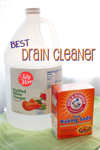 Homemade Organic Drain Cleaner That Worksapplepins Com