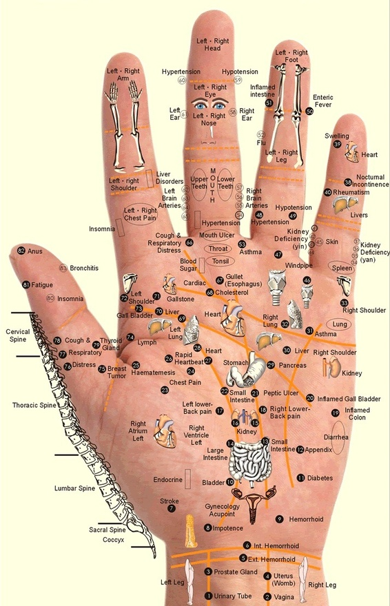 Acupressure points.